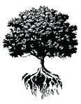 cropped-treeroots.jpg